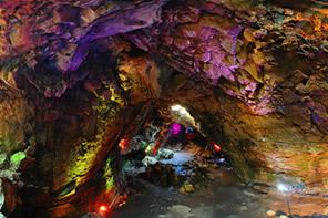 cuevaorquidea