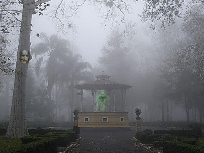 fantasma_berros